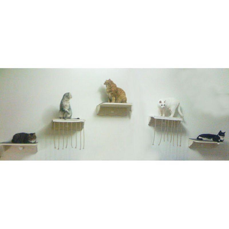 cats design nr 01 katzen regal cats f 24 99. Black Bedroom Furniture Sets. Home Design Ideas