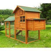 Chicken Coop No. 06 Collosus with egg box & enclosure