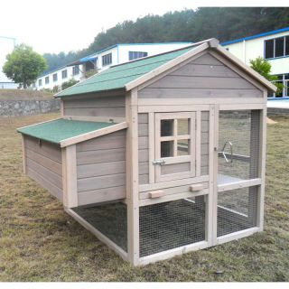 Chicken Coop No. 04  Egg Bunker with egg box