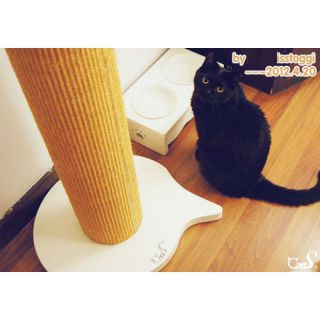 CatS Design no. 03 Scratching Tower Strong Stray