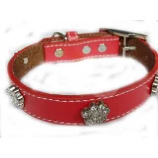 Dog collar / leash no. 06 Footsteps