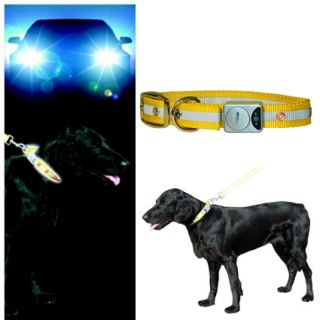 Hundehalsband Flash & Reflex